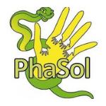 Phasol
