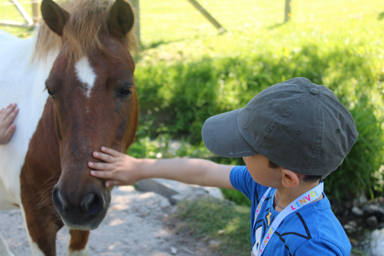 Enfant caressant un cheval