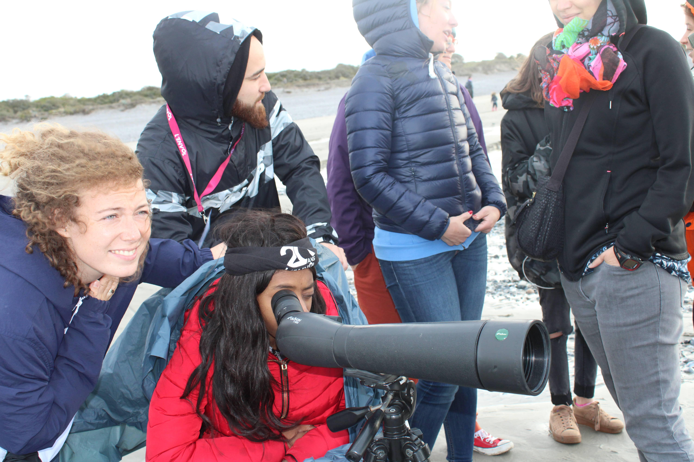 Observation des photos de Cayeux-sur-mer